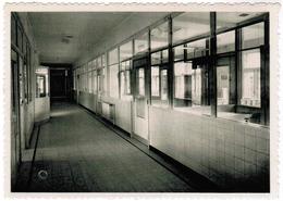 Deinze Sint Vincentiuskliniek, Kinderafdeling, Boxen (pk55634) - Deinze