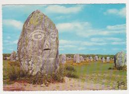 26933 Bretagne Carnac Menhir -visage Pierre  Sculpture -20.5.10 Jos - Dolmen & Menhirs