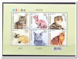 Oekraïne 2007, Postfris MNH, Cats - Oekraïne