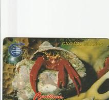 Cayman Islands - Crab (Old Logo) - 3CCIB - Kaimaninseln (Cayman I.)