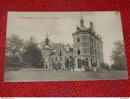 BRUGELETTE  -  Chateau De Mme Goffinet  -  1910 - Brugelette