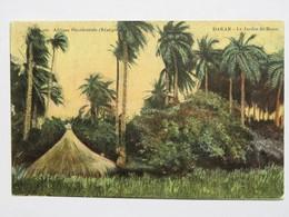 C. P. A. Couleur : Sénégal : DAKAR : Le Jardin De Hann, En 1918 - Sénégal