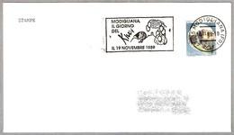 DIA DEL KIWI - DAY OF KIWI. Modigliana, Forli, 1989 - Kiwis