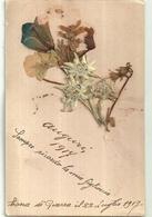 """3000 """" STELLE ALPINE-SPEDITA DA ZONA DI GUERRA NEL 1917 """" CART.  POST.  ORIGIN. SPED - Fiori"""