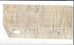 PARCHEMIN  Pau Université  Texte En Latin  François De Péborde  ( Cardesse ) + Papier ( Noms D'examinateurs ) 1762 -1763 - Documents Historiques