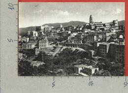 CARTOLINA NV ITALIA - FROSINONE - Panorama - Ed. Albino Bracaglia - 10 X 15 - Frosinone