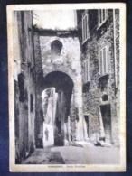 TOSCANA -PISA -POMARANCE -F.G. LOTTO N°394 - Pisa