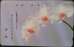Telefonkarte Japan - Blumen,flowers - Orchideen,orchid - 110-176 - Blumen