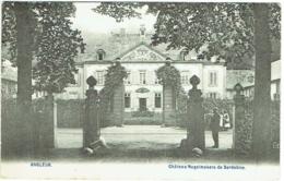 Angleur. Château Nagelmakers De Serdobine. - Liege