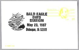 DIAS DEL AGUILA CALVA - BALD EAGLE DAYS. Dubuque IA 1987 - Águilas & Aves De Presa