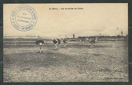 MAROC 1912 CPA Corps Débarquement Du Maroc - Marcophilie (Lettres)