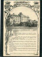 CPA - Château De CADILLAC - Cadillac