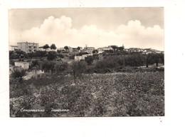 M8199 MOLISE Campomarino Campobasso 1959 VIAGGIATA - Autres Villes