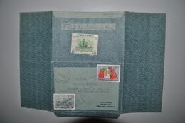 Pérou 1969 Aérogramme Pérou Vers Belgique - Pérou
