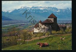 Schloss Vaduz - Liechtenstein [AA38 2.230 - Liechtenstein