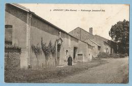 1861  CPA   ANROSEY  (Haute-Marne)  Patronage Jeanne D'Arc    +++++++ - France
