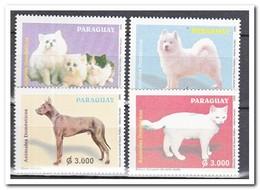 Paraguay 2005, Postfris MNH, Cats, Dogs - Paraguay