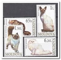 Moldavië 2007, Postfris MNH, Cats - Moldavië