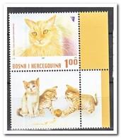 Bosnië & Herzegovina 2007, Postfris MNH, Cats - Bosnië En Herzegovina