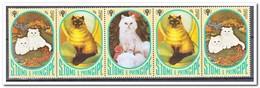Sao Tome & Principe 1981, Postfris MNH, Cats - Sao Tome En Principe