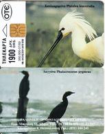 GREECE - Hellenic Ornithology Company 1(1900 GRD), 07/00, Used - Greece