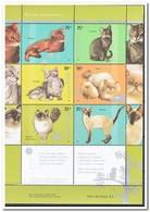 Argentinië 2005, Postfris MNH, Cats - Argentinië