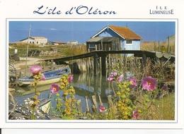 17. CPM. Charente Maritime. Ile D'Oléron. Cabanes D'ostréiculteurs - Ile D'Oléron