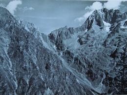 Valsenestre.   Muzelle Et Col    242 - France