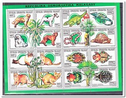 Madagaskar 1993, Postfris MNH, Animals - Madagaskar (1960-...)