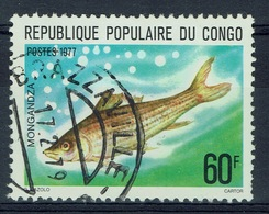 Congo (Brazzaville), Fish, Mongandza, 1977, VFU - Congo - Brazzaville