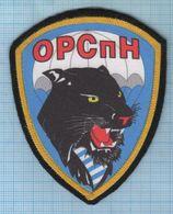 RUSSIA / Patch Abzeichen Parche Ecusson / Airborne General Directorate Of Intelligence. Special Forces. Panther. - Blazoenen (textiel)
