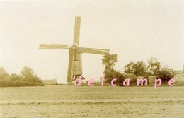 GODVEERDEGEM - Zottegem (O.Vl.) - Molen/moulin - Wellicht Enig Gekende Opname Van Molen Van Steenberge - Zottegem