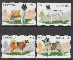 1999 Lesotho Dogs Chiens Complete Set Of  4 MNH - Lesotho (1966-...)