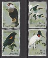 2007 Lesotho Birds Oiseaux Complete Set Of  4 MNH - Lesotho (1966-...)