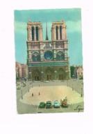 La Cathédrale Notre-Dame.La Façade Et Le Parvis.Oldtimer.Vieilles Autos. - Notre Dame De Paris