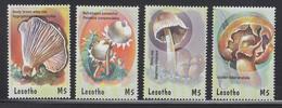 2001 Lesotho Mushrooms Fungi Complete Set Of  4 MNH - Lesotho (1966-...)
