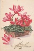 Anniversaire : Fleurs Dans Un Corbeille ( Charme ) - Cumpleaños