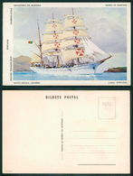 PORTUGAL - OUTROS [ 0432 ] - BARCOS SHIP BATEAU PAQUEBOT STEAMER - NAVIO ESCOLA SAGRES - Voiliers
