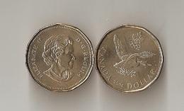 Canada - 1 Dollar 2006 UNC Lemberg-Zp - Canada