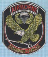 RUSSIA / Patch Abzeichen Parche Ecusson / Airborne. Special Forces. Screaming Eagles.  Informal. 1990s - Blazoenen (textiel)