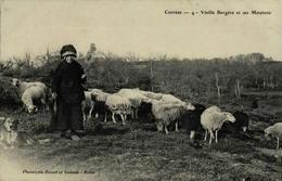 19 - Corrèze - Vieille Bergère Et Ses Moutons - Francia