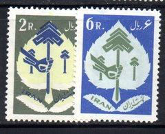XP4339 - IRAN PERSIA 1962,  Serie Yvert N. 974/975 *** - Iran