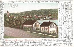 BUCKOW Märkische Schweiz Passepartout Vom Werder Aus Villa Schülke Gelaufen 22.5.1903 - Muencheberg