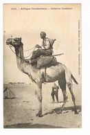 CPA. Dakar. Méhariste Soudanais.                   (F.401) - Sénégal