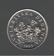 CROATIA - CROACIA -  50 Lipa 1993   KM8  - Flowers - VELEBITSKA DEGENIJA - Croatie