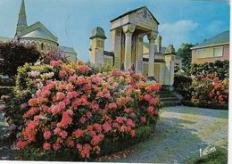 Cp , 41 , LAMOTTE-BEUVRON , Les Rhododendrons Du Jardin Public, L'Église Et Le Monument Aux Morts - Lamotte Beuvron