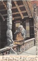 Océanie - 10820 - Guide Sophia Of Tarawera Fame - Défaut - Nouvelle-Zélande
