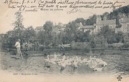 CPA - France - Thèmes - Agriculture - Elevage - Scène Du Centre - Baignade D'oies - Elevage