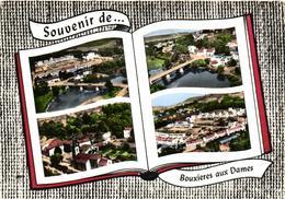 1 Cpsm Souvenir De Bouxieres Aux Dames - France