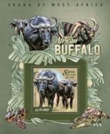 Sierra Leone   2015 Fauna African Buffalo - Sierra Leone (1961-...)